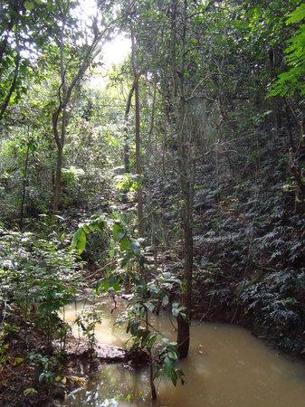 Kula Eco Park : Eco Park