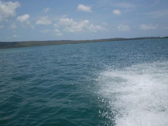 Morrocoy Coral Reef: El Mar