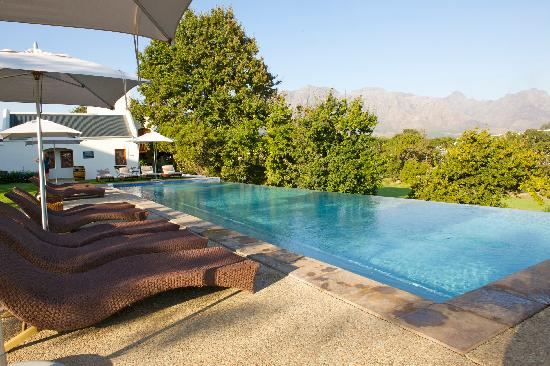 De Zalze Lodge: The pool at the lodge