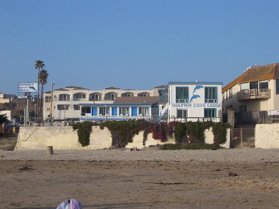Dolphin Cove Motel: The hotel from the beach