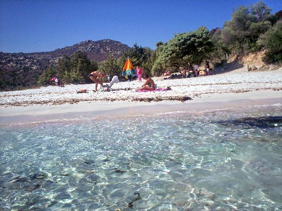 Corsica Tripadvisor Hotels