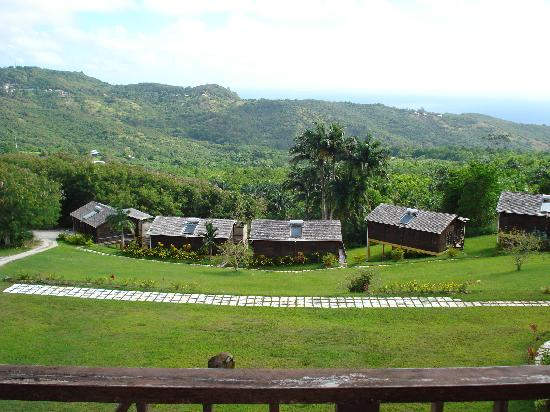 Lush Life Nature Resort: view of cottages from Naniki Restaurant