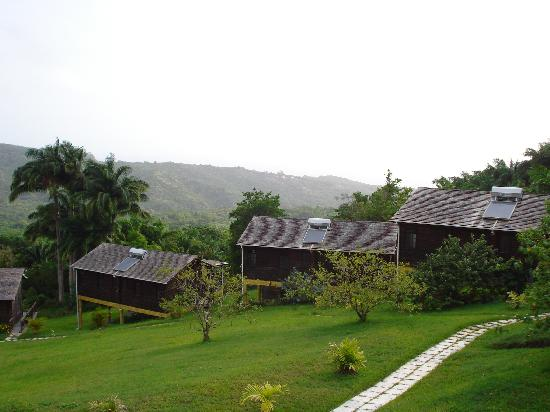 Lush Life Nature Resort: Another great view