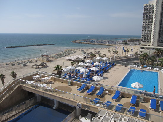 Swimming Pool Picture Of Sheraton Tel Aviv Hotel Tel