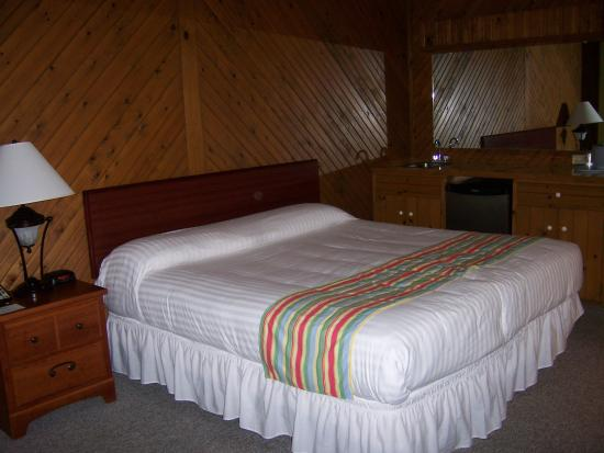 Ship-N-Shore Hotel : Room 123
