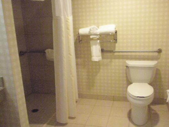 Hilton Garden Inn Omaha West: Huge Bathroom