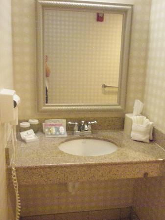 Hilton Garden Inn Omaha West : Sink Area in Bathroom