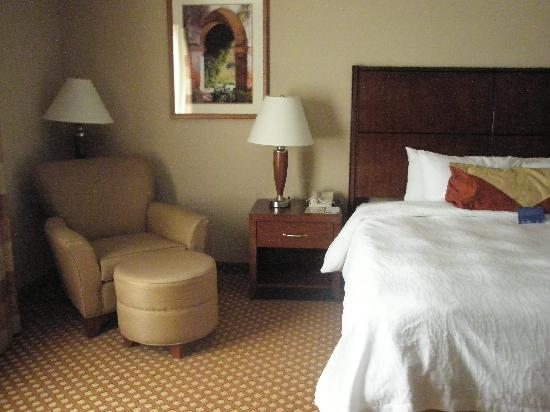 Hilton Garden Inn West Omaha: Room