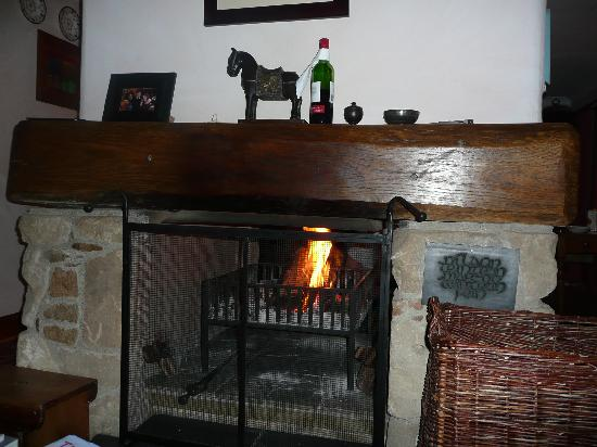 Roineabhal Country House: Fireplace