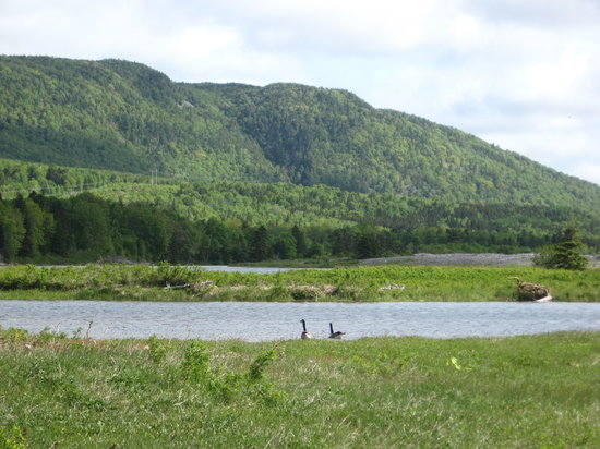 Englishtown, Canada: Great walking trails