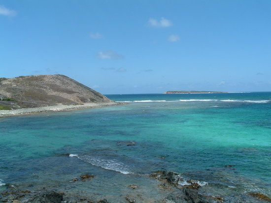 Saint-Martin, St Martin / St Maarten: Good snorkeling a couple feet in