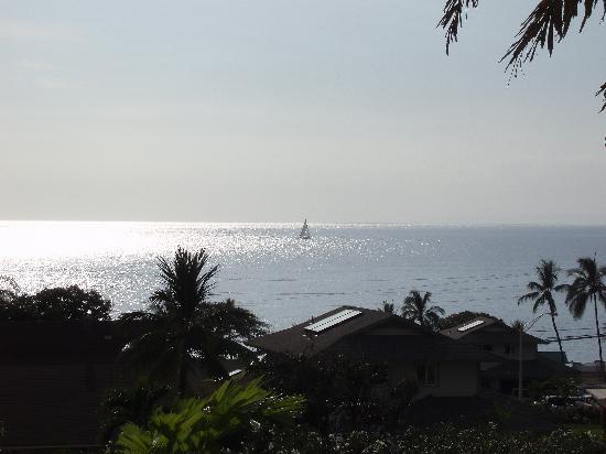 غاردن غايت بيد آند بريكفاست: View from our balcony