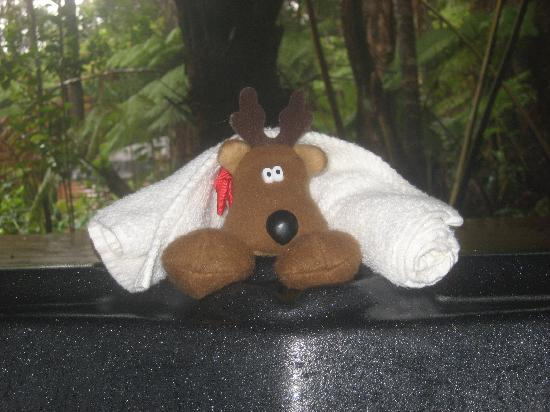 At the Craters Edge: Our traveling mascot, the Wee Patudy, enjoying a hot tub