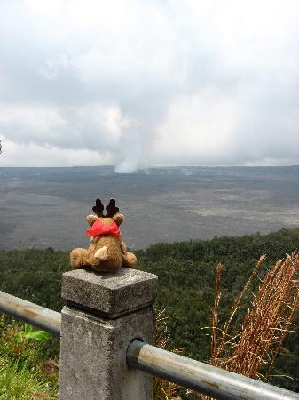 ‪‪At the Craters Edge‬: Wee Patudy viewing the caldera‬