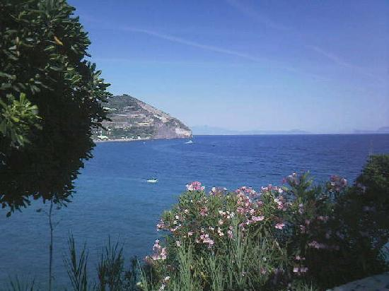 Sant'Angelo, İtalya: View from gardens of Park Hotel Miramare