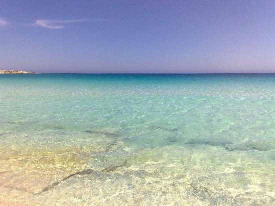 Jaz Almaza Beach Resort: Acqua chiara, acqua azzura