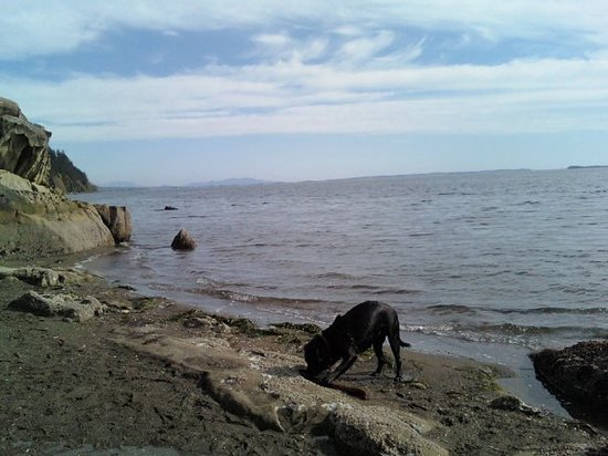More Clayton Beach