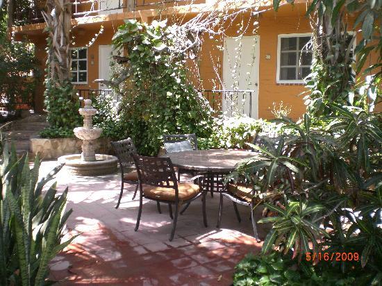 The Bungalows Hotel : The outdoor garden