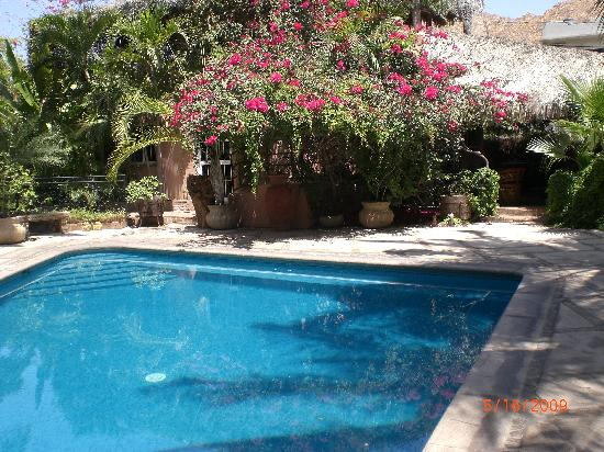 The Bungalows Hotel : The pool