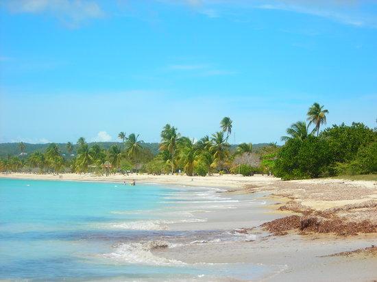 Isla de Vieques, Porto Riko: sun bay beach