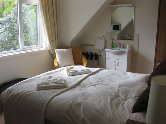 Annfield Guest House: Attic room