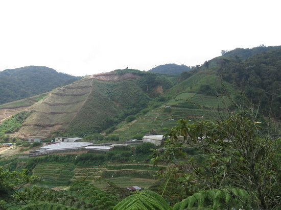 Cameron Highlands, Malaisie : a view frm the highway