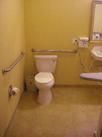 Civic Center Motor Inn: Toilet