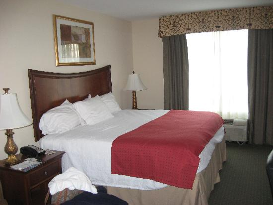 Holiday Inn Brunswick-I-95 (Exit 38): Our Room