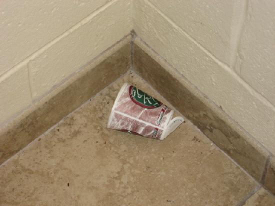 Comfort Suites Seaford: Hallway trash