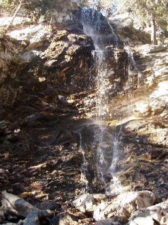 San Bernardino National Forest: One of the many falls in the Forest Falls area