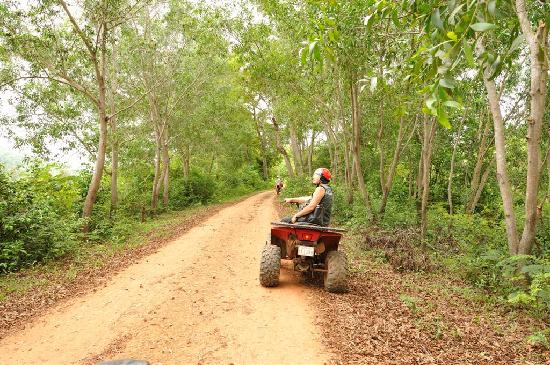 Quad Adventure Cambodia Siem Reap: Quads