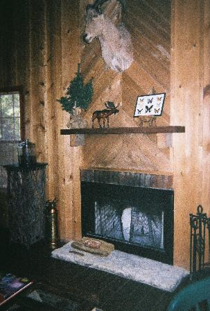 The Lodges at Lost Maples: fireplace