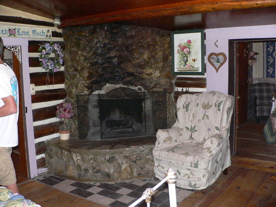 Snowy Pine Cabins & RV: Fireplace in Living Room
