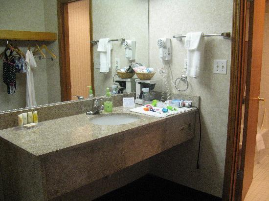 Quality Inn Marietta: Nice Vanity