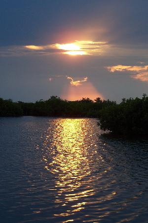 Las Terrazas Resort: and breathtaking sunsets over the lagoon.