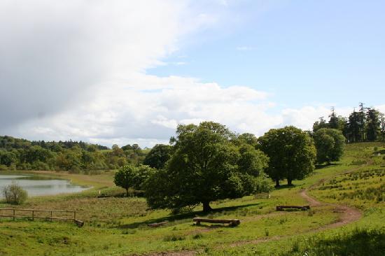 Castle Leslie Estate: The course