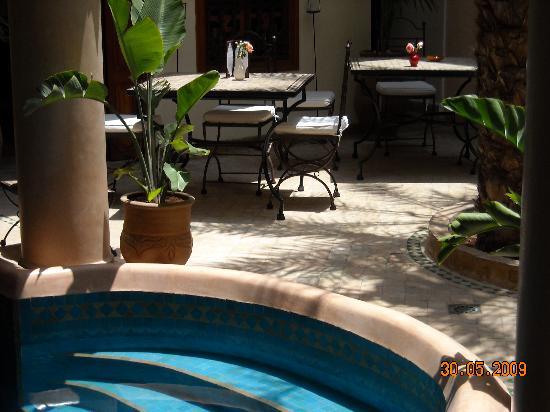 Riad Les Trois Palmiers El Bacha : la zone fraiche