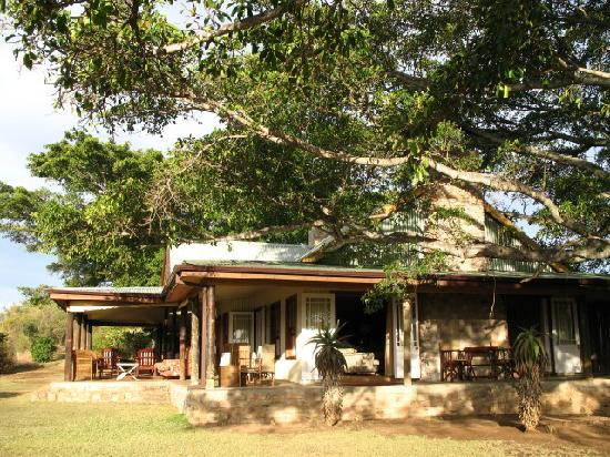 Camp Figtree: verandah and guest area