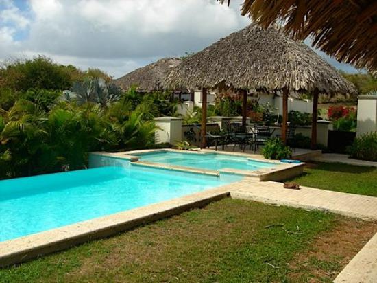 Villa Paradiso: pool