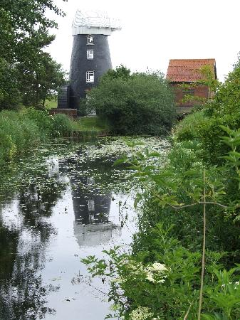Little Willows: A local Windmill on the way to Reedham Ferry.