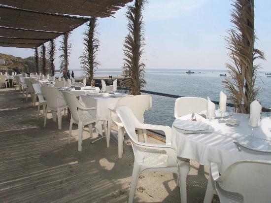 Hostal Restaurante Isleta Del Moro: La Terraza del Restaurante - una maravilla