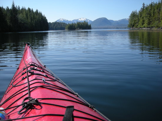 Southeast Sea Kayaks: View from our kayak