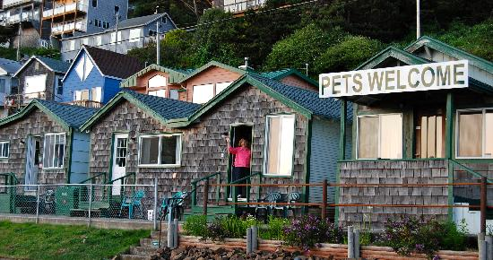 Oceanside, OR: Oceanfront cabins
