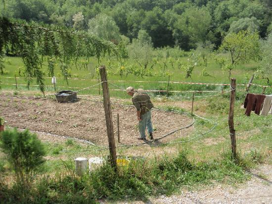Walk About Tuscany Tours: farmer we passed along the way