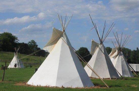 Les Tipis du Bonheur de Vivre : Un campement avec 18 tipis sur un parc de plusieurs hectares