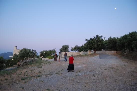 Dalabelos Estate: A stroll at dusk into the olive grove
