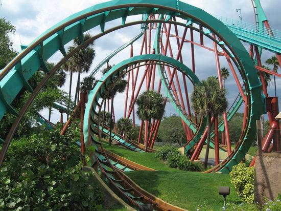Тампа, Флорида: Coaster
