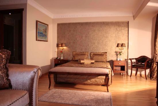 Villa pasha Hotel / istanbul