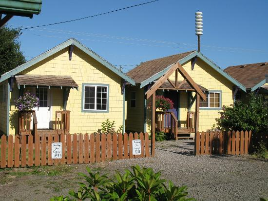 Seaview Motel & Cottages: Cottages