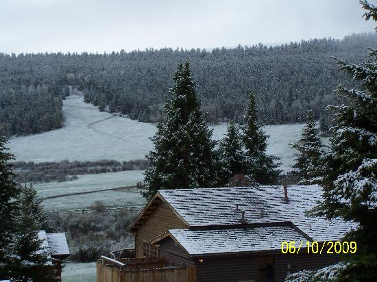 Paradise Guest Ranch: Out our cabin window.